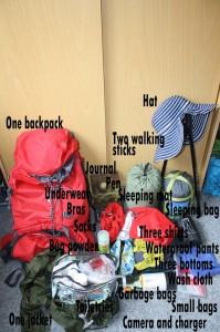 Preparing for a Pilgrimage: What to Take on the Camino de Santiago camino de santiago