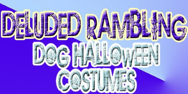 let your dogs have fun this halloween