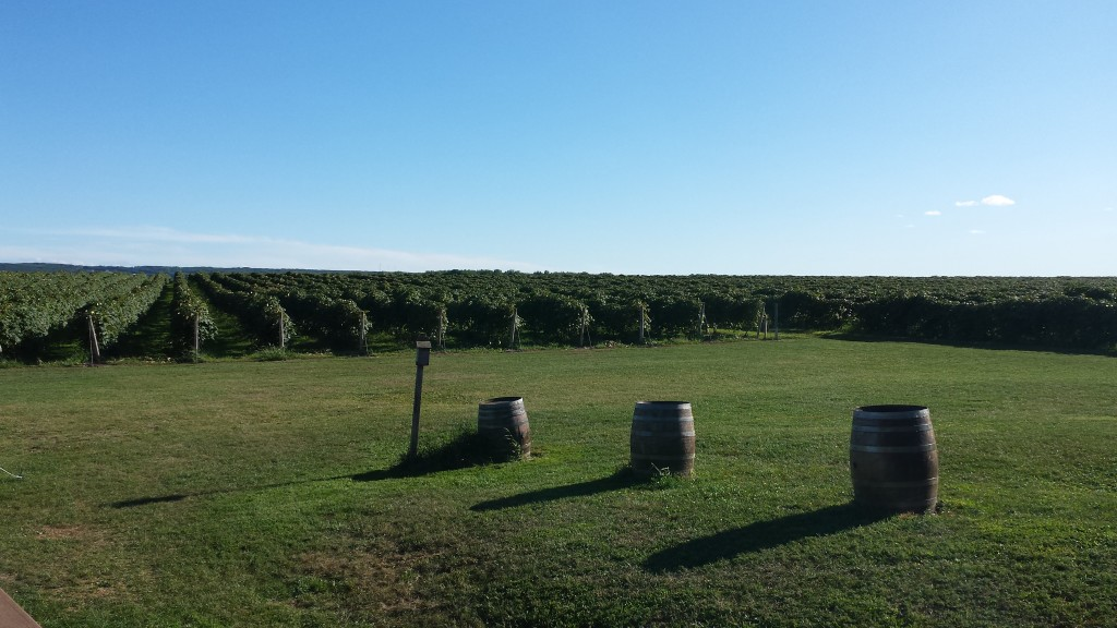 Penn Shore Winery and Vineyards